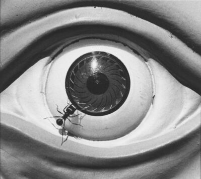 David Wojnarowicz, 'Untitled (eye with ants) from the Ant series ', 1988-1989