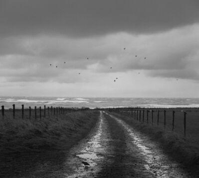 Pentti Sammallahti, 'Deerness, Mainland, Orkney', 2016