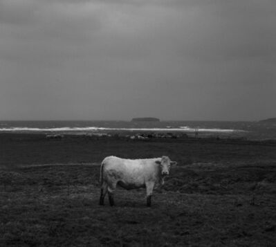 Pentti Sammallahti, 'Deerness, Mainland, Orkney, from Near the Wind ', 2016