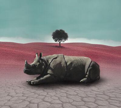 Eriko Kaniwa, 'Rhino', 2019