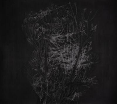 Gizem Akkoyunoğlu, 'Blind Light, Deaf Darkness', 2019