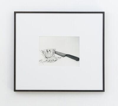 Talia Chetrit, 'Fennel', 2015
