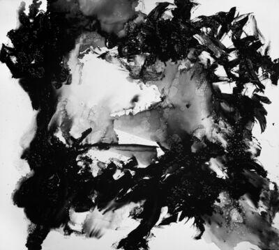 Andres Waissman, 'Untitled II bis', 2013