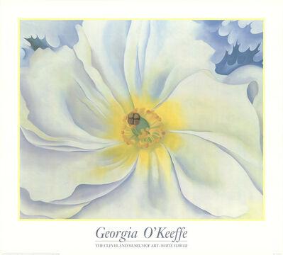 Georgia O'Keeffe, 'White Flower', 1989