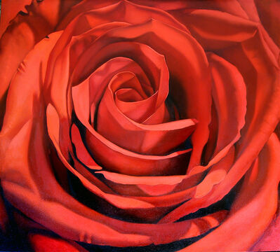Margaret Morrison, 'Red Rose', 2008