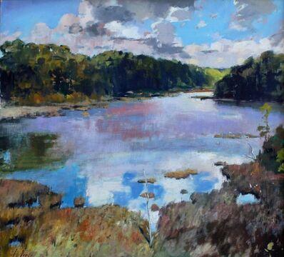 Julyan Davis, 'Blue Heron Pond', 2000-2010