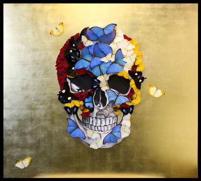 SN, 'Golden Skull ', 2018