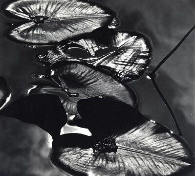 Brett Weston, 'Alaska', 1977