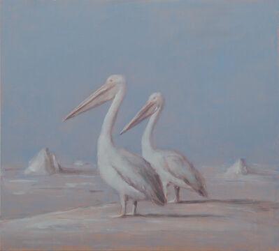 Miguel Branco, 'Untitled (Pelicans)', 2017