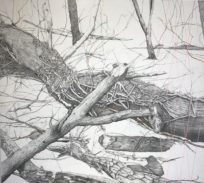 Kiki Gaffney, 'Fallen Trees', 2020