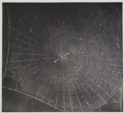 Vija Celmins, 'untitled (Web 2)', 2001
