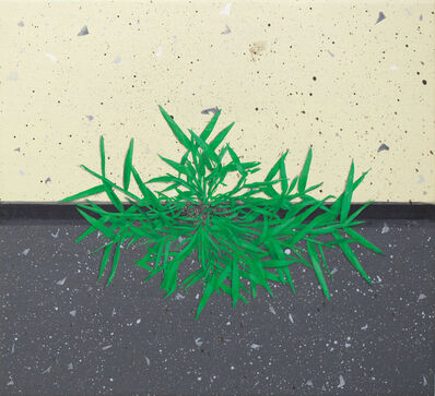 Hannah Cole, 'Crabgrass 2 ', 2017