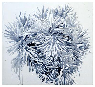 Katrin Assmann, 'LA Plant #05', 2018