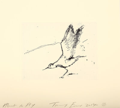Tracey Emin, 'About To Fly', 2014