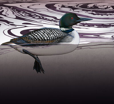 Ink Dwell (Jane Kim), 'Common Loon', 2020