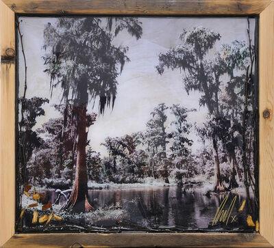 Raphael Mazzucco, 'The Never-Ending Summer - Forbidden Swamp', 2018