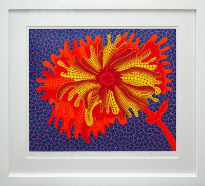Yayoi Kusama, 'FLOWERS C', 2005