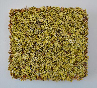 Erin Walrath, 'Yellow'