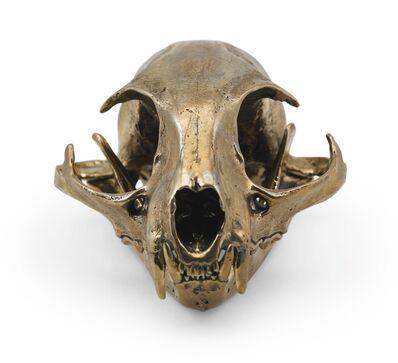 Sherrie Levine, 'Bobcat Skull', 2010