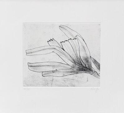 Prunella Clough, 'Paper Flowers', 1996