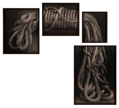 David Halliday, 'Rope', 2013