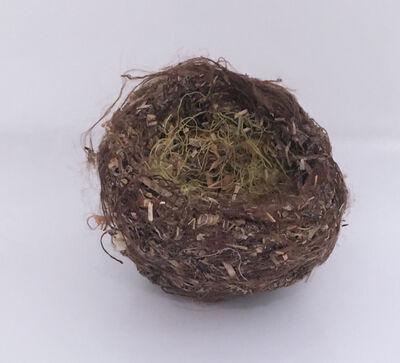 Robert Lach, 'Brown Nest', 2020