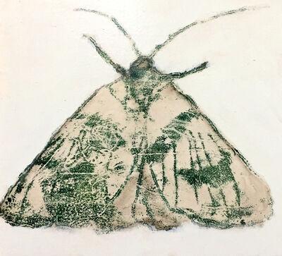 David Konigsberg, 'Moth #6', 2020