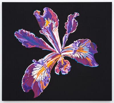 Francesca Gabbiani, 'Vortex Flower (iris)', 2016
