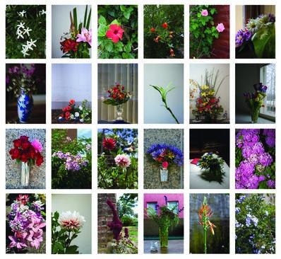 Nicolas Martella, 'Flowers', 2015