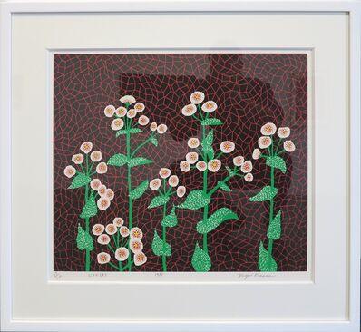 Yayoi Kusama, 'Flowers (2)', 1985