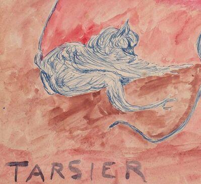 Justin McCarthy, 'Tarsier', ca. 1917-1922