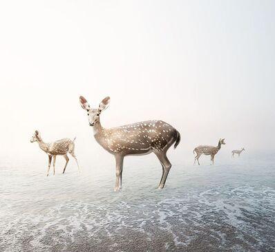 Alice Zilberberg, 'Stay My Deer', 2019