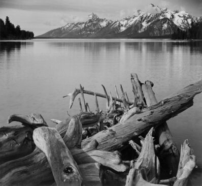 Ansel Adams, 'Tetons and Jackson Lake, Driftwood', 1942