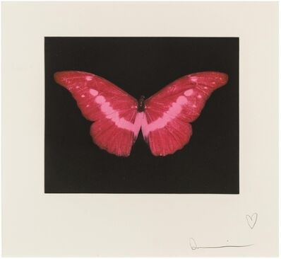 Damien Hirst, 'To Lose (Red Butterfly0', 2008