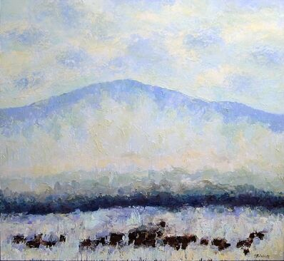 Theodore Waddell, 'Lima Angus #5'