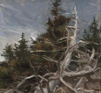 Alexandra Tyng, 'Dead Tree', 2011