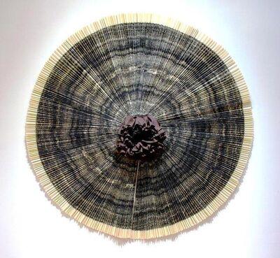 Ann Hamilton, 'ciliary', 2010