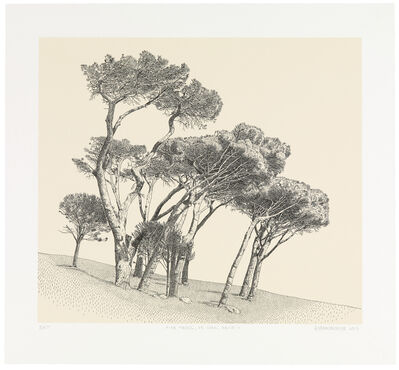 Anton Kannemeyer, 'Pine Trees, De Waal Drive (II)', 2017