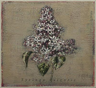 Jacques Payette, 'Syringa vulgaris no 1', 2018