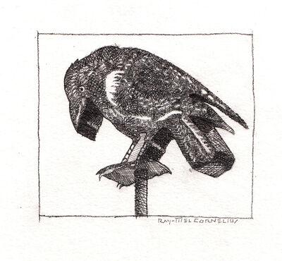 Ray-Mel Cornelius, 'Ravens Sign', 2017
