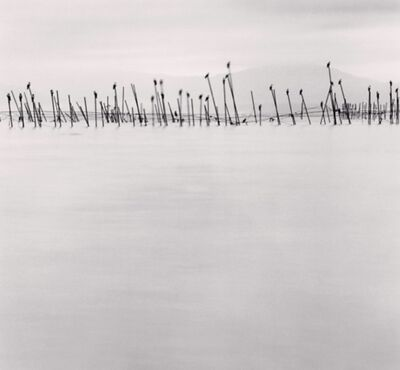 Michael Kenna, 'Birds on Poles, Biwa Lake, Honshu, Japan', 2001