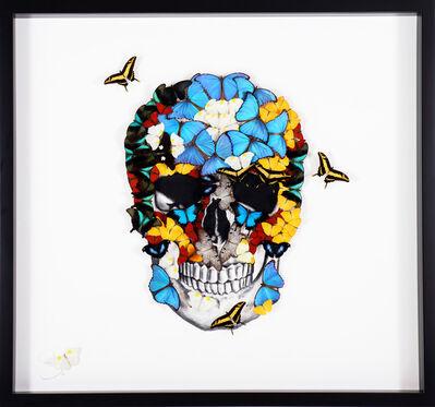 SN, 'Butterfly Skull ', 2019
