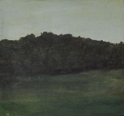 Santiago Quesnel, 'Field II', 2015