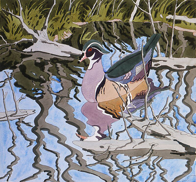 Neil G. Welliver, 'Wood Duck', 1984