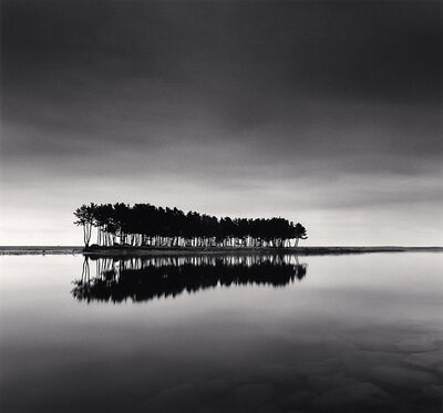 Michael Kenna, 'Pine Trees, Study 1, Wolcheon, Gangwondo, South Korea', 2007