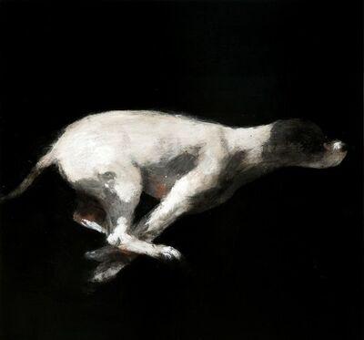 Miguel Macaya, 'Untitled (Perro)', 2008