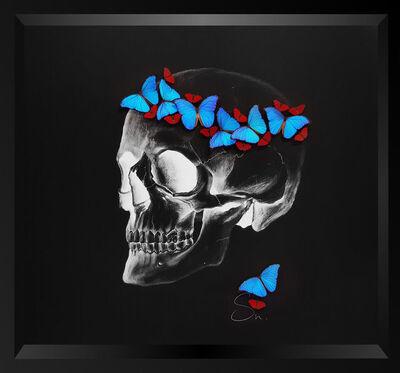 SN, 'Negative skull (Red-Blue)', 2017