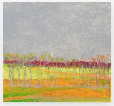 Wolf Kahn, 'Broad Gray Sky', 2014