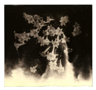 Yamamoto Masao, '1615, from Kawa=Flow', 2012