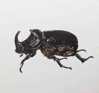 Carlos Alarcón, 'Still Lives, (Beetle) ', 2021